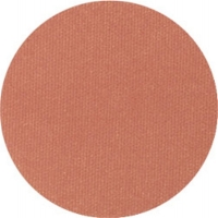 Terracotta Spice Blush